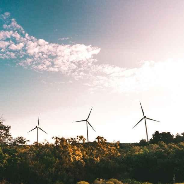 Transición ecológica: ¿caída o impulso para el empleo?