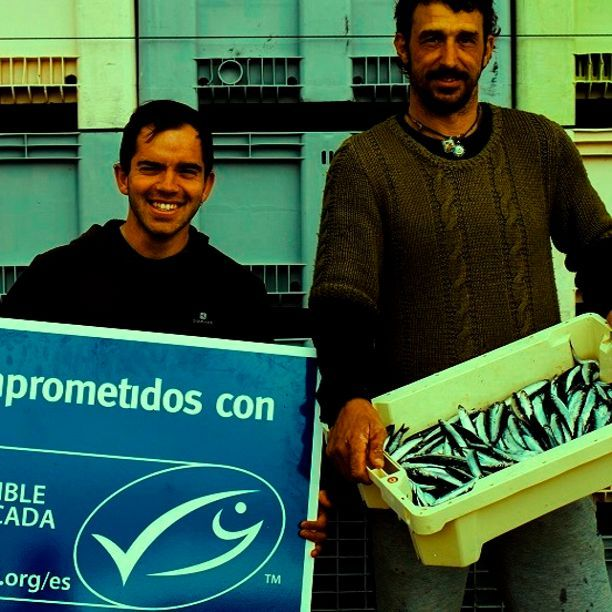 MSC: pescado con sello azul por un mar vivo