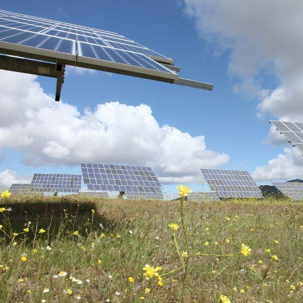 Triodos Bank respalda el informe de la Comisión Europea sobre finanzas verdes