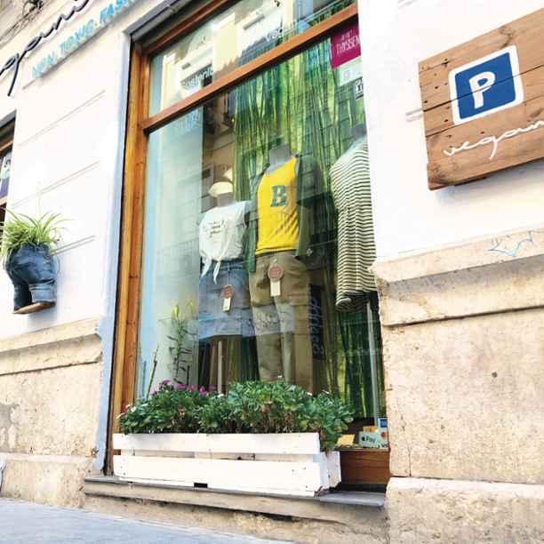 Triodos Bank dedicará más de 60 millones € a la financiación de proyectos de inversión y liquidez